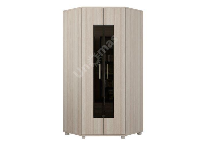 Ультра №3 - шкаф угловой, Спальни, Угловые шкафы, Стоимость 18059 рублей.
