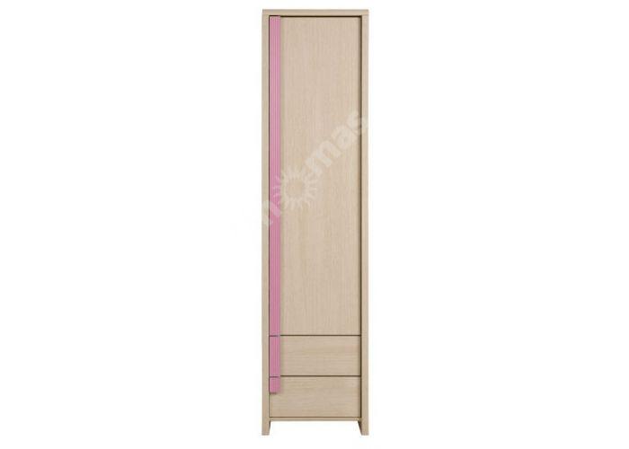 Капс Розовый, 009 Шкаф REG1D2S, Офисная мебель, Офисные пеналы, Стоимость 8700 рублей.