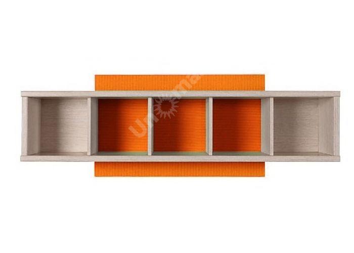 Нумлок Оранжевый, 003 Полка SFW/120, Офисная мебель, Полки, Стоимость 3000 рублей.