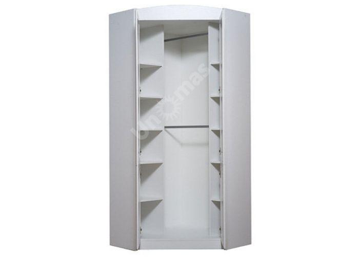 Салерно, 011 Шкаф угловой B18-SZFN2D, Спальни, Угловые шкафы, Стоимость 29453 рублей., фото 5