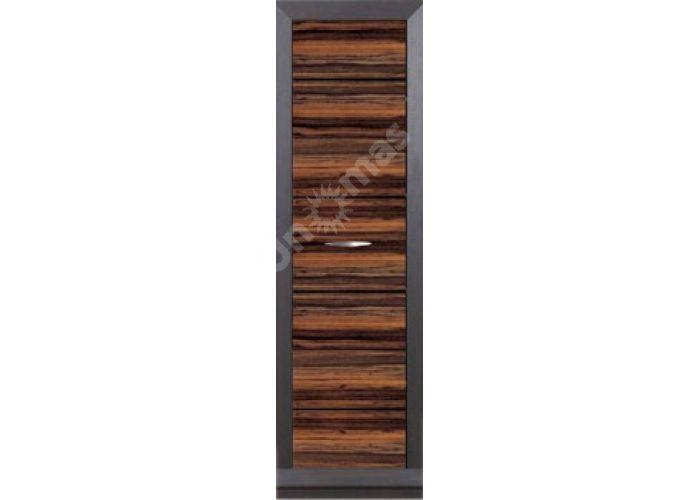 Ларго Дуб венге/Макасар, 026 Пенал PREG 1D/20/6, Офисная мебель, Офисные пеналы, Стоимость 10725 рублей.