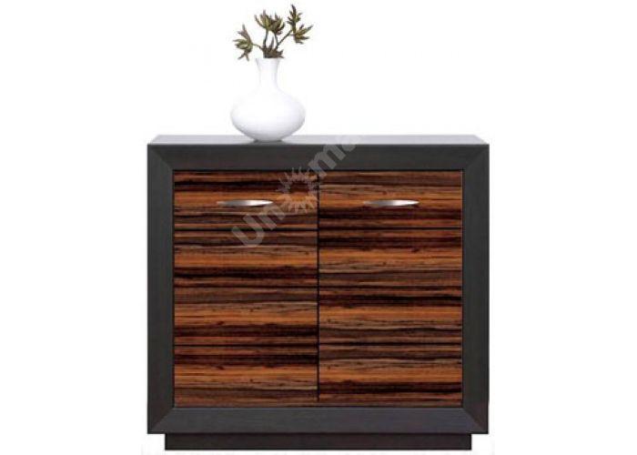 Ларго Дуб венге/Макасар, 017 Шкафчик PREG 2D/11, Спальни, Комоды, Стоимость 6675 рублей.