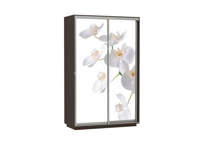 Шкаф-купе Орхидея 120х220х60 см , Шкафы-купе, Стоимость 13090 рублей., фото 2