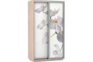 Шкаф-купе Орхидея Дуо / 160х220х60 см