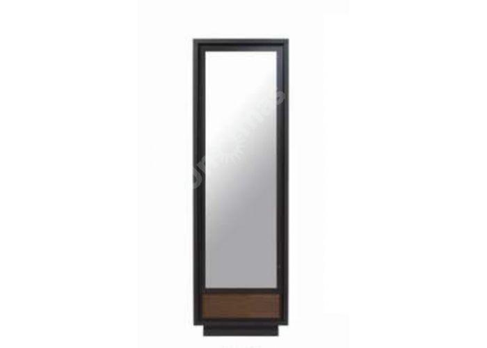 Арека (Areka), 018 Шкаф SZF1D1S, Спальни, Шкафы, Стоимость 14550 рублей.