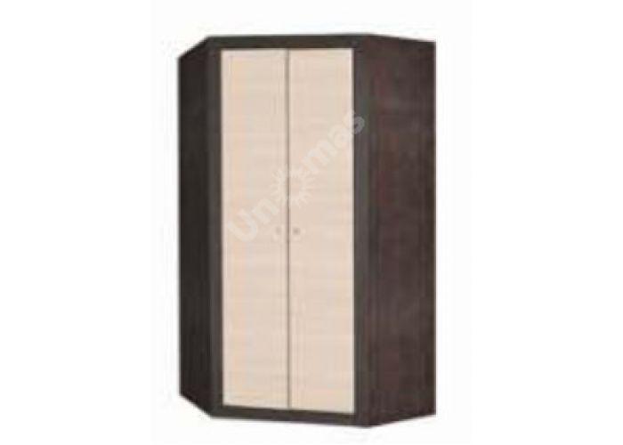 Капри, KA-025a Шкаф угловой 2d-99/42, Спальни, Угловые шкафы, Стоимость 18066 рублей., фото 4