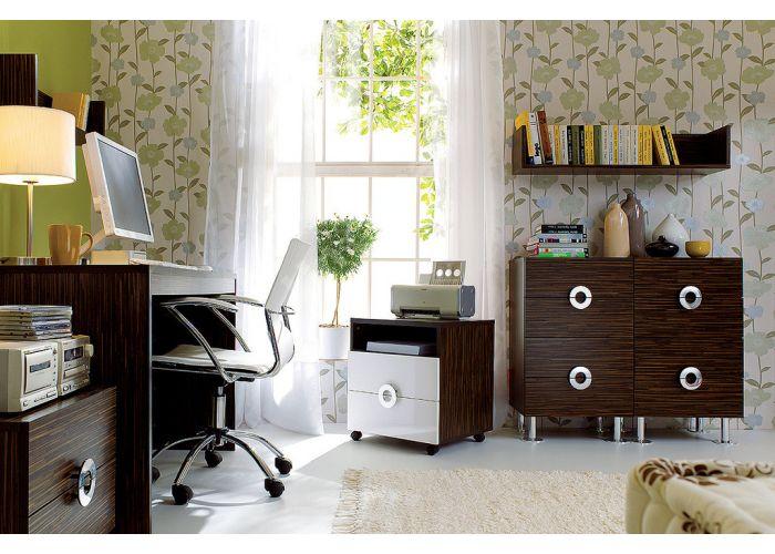 Ринго (Ringo), 011 Шкаф REG/5/19, Офисная мебель, Офисные пеналы, Стоимость 4509 рублей., фото 4