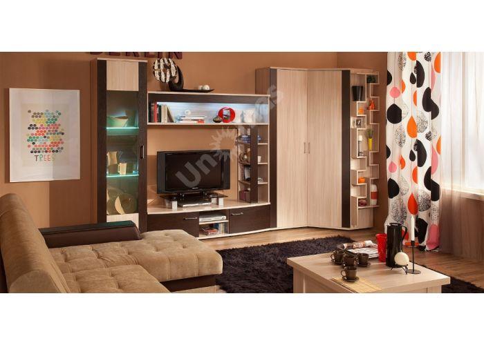 Berlin 20 Шкаф навесной, Гостиные, Полки, Стоимость 8375 рублей., фото 5