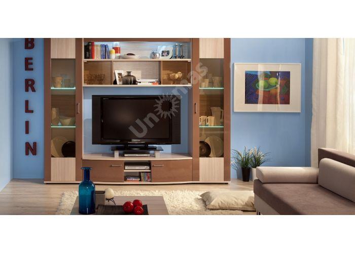 Berlin 20 Шкаф навесной, Гостиные, Полки, Стоимость 8375 рублей., фото 4