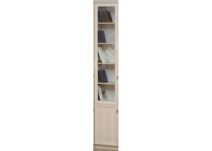 В-17 Шкаф многоцелевого назначения (дверь комбинированная), Офисная мебель, Офисные пеналы, Стоимость 7036 рублей.