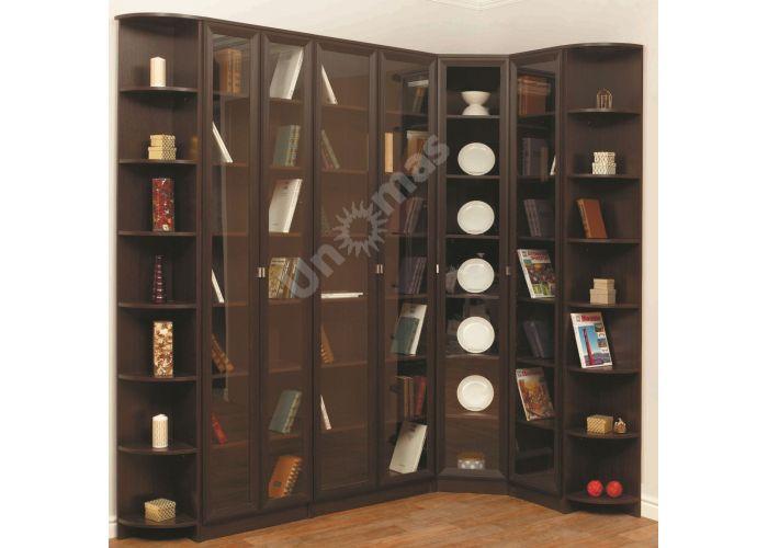 В-21 Шкаф комбинированный Венге, Офисная мебель, Офисные пеналы, Стоимость 2732 рублей., фото 3