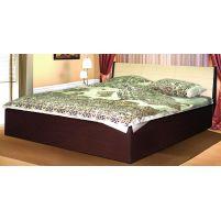 06.121-02 Кровать с откидным механизмом  (спальное место 1600*2000)