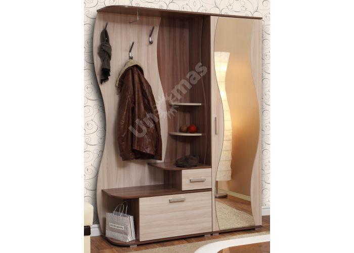 Визит - М10 шкаф комбинированный + Шкаф для одежды Визит - М07 + Зеркало №2, Прихожие, Прихожие, Стоимость 14099 рублей., фото 2