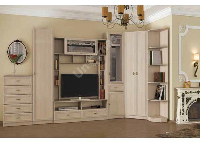 Вега, ВМ-12 шкаф для посуды, Гостиные, Модульные гостиные системы, Вега, Стоимость 21087 рублей., фото 2