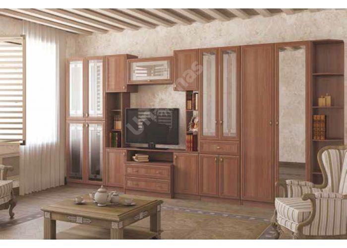 Вега, ВМ-04 шкаф 2-х створчатый, Гостиные, Модульные гостиные системы, Вега, Стоимость 13487 рублей., фото 3