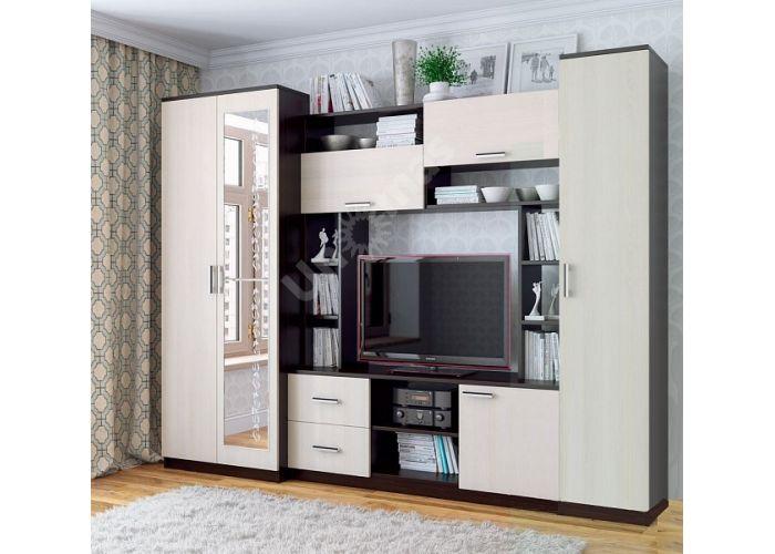Гостиная №3 с зеркалом, Гостиные, Стенки, Стоимость 15101 рублей.