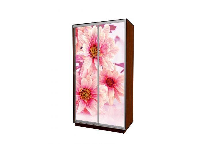 шкаф купе сенатор промо фотопечать цветы 120х60х220 купить шкаф