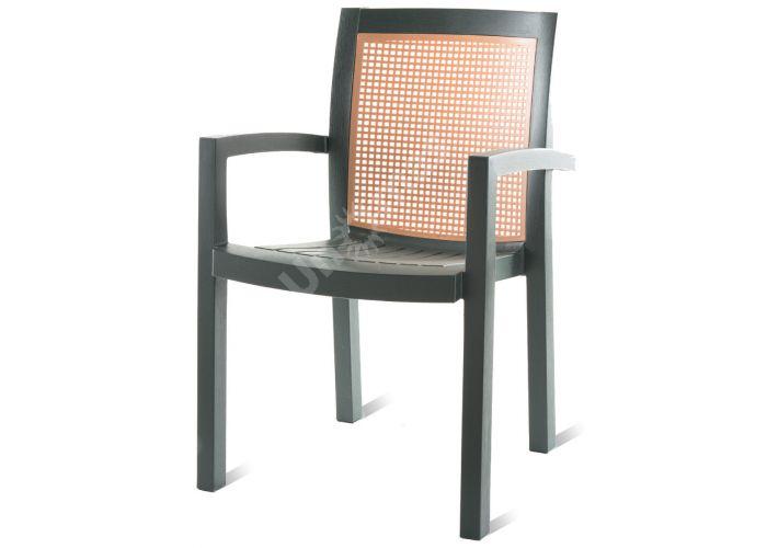 Вира Пластиковое кресло темно-зеленое, Пляж и сад, Уличная мебель, Стулья и кресла, Стоимость 3300 рублей.