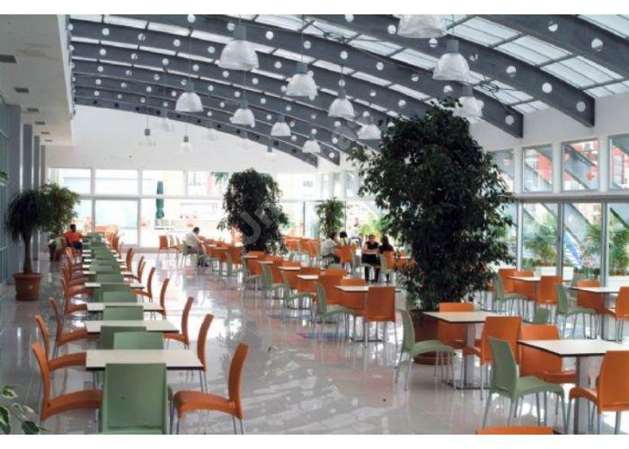 Витал-С Пластиковый стул оранжевый, Кухни, Стулья и табуреты, Пластиковые стулья, Стоимость 3960 рублей., фото 3