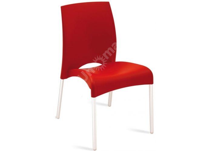Витал-С Пластиковый стул красный, Кухни, Стулья и табуреты, Пластиковые стулья, Стоимость 3960 рублей.