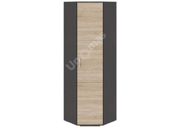 Успех-2, ПМ-184.19 Шкаф для одежды угловой, Спальни, Угловые шкафы, Стоимость 10777 рублей.
