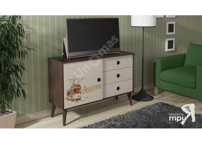 Тумба 23 с рисунком, Гостиные, ТВ Тумбы, Стоимость 6261 рублей., фото 3